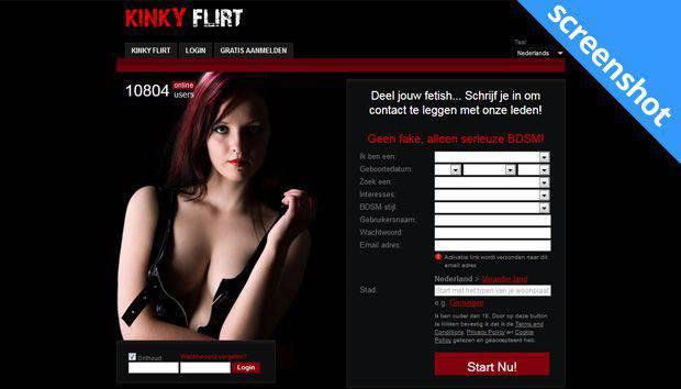 Kinky Flirt screenshot