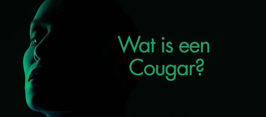 wat is een cougar